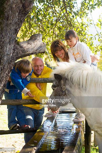 Family watching pony at fountain