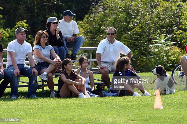 family watching the game - bleachers stock pictures, royalty-free photos & images