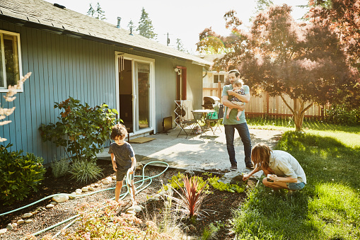 Family watering garden in backyard on summer morning - gettyimageskorea