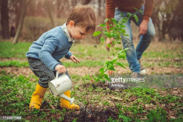 family watering tree while gardening on arbor day in springtime - watering stock pictures, royalty-free photos & images