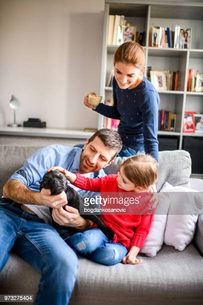 family with child and a dog - family with one child stock pictures, royalty-free photos & images