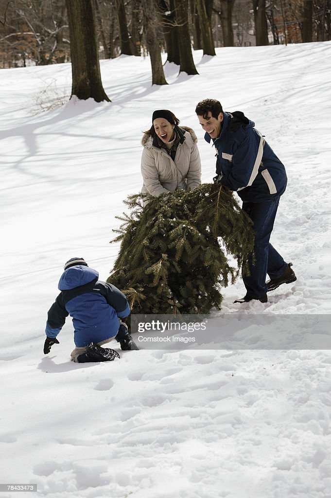 Family with Christmas tree in snow : Stockfoto