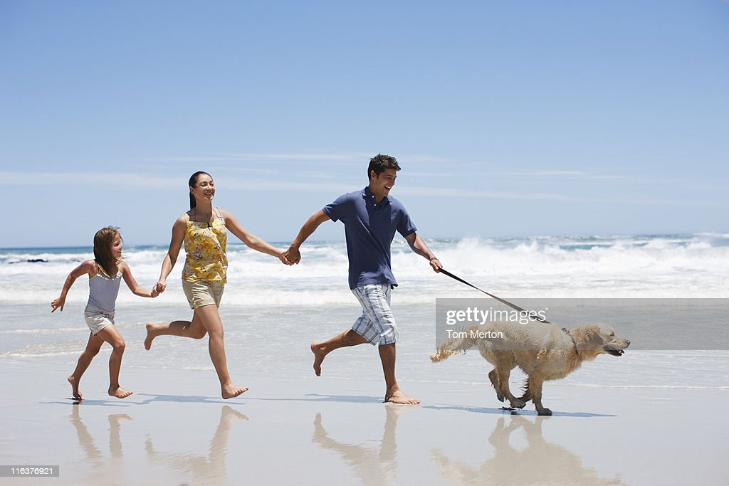 Family with dog running on beach : Stock Photo