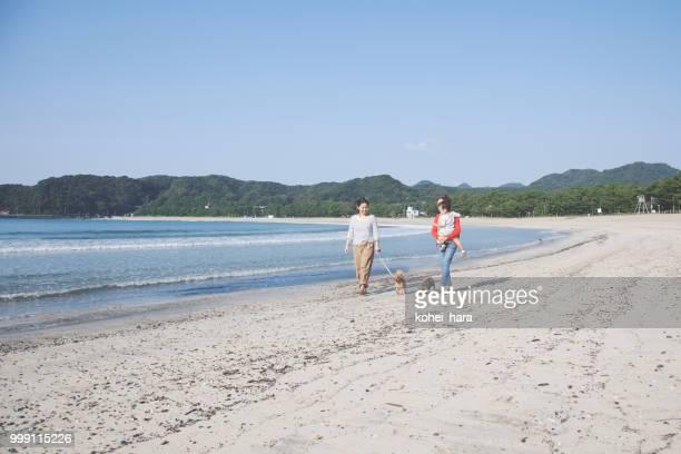 ビーチの上を歩く犬と家族