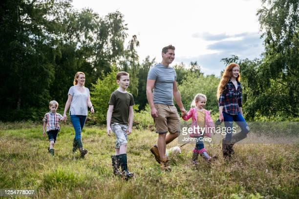 family with four children and dog hiking in natural parkland - forest stock pictures, royalty-free photos & images