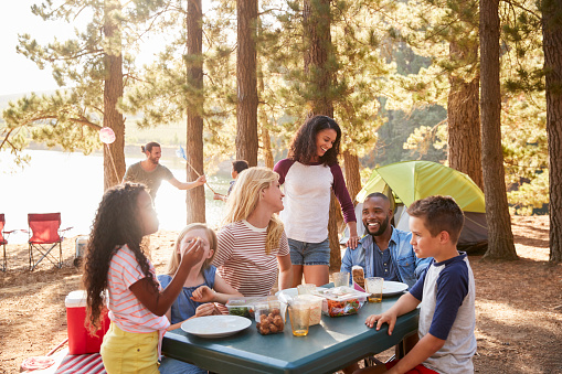 Family With Friends Camp By Lake On Hiking Adventure In Forest 966220644