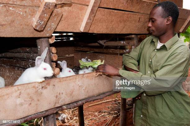 Family with rabbits kept for food Rwanda