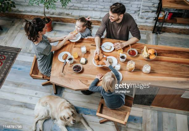 family's breakfast at home! - dog eats out girl stock pictures, royalty-free photos & images