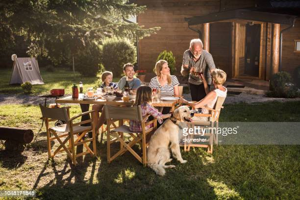 family's lunch at backyard! - dog eats out girl stock photos and pictures