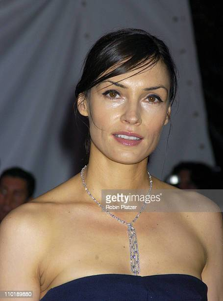 Famke Janssen during 2004 Costume Institute Gala 'Dangerous Liaisons' Arrivals at Metropolitan Museum of Art in New York City New York United States