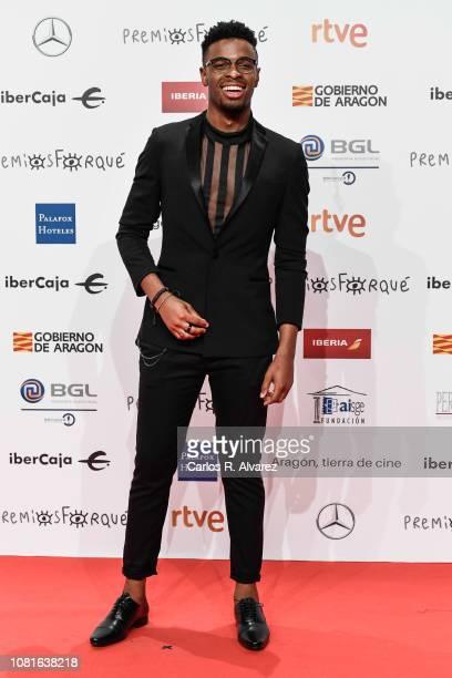 Famous attends the red carpet during 'Jose Maria Forque Awards' 2019 at Palacio de Congresos on January 12 2019 in Zaragoza Spain