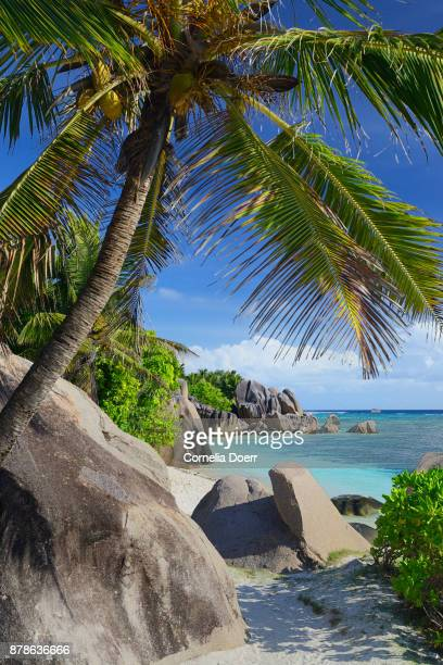 famous beach anse source d'argent - la digue island stock pictures, royalty-free photos & images