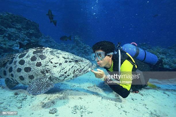 Famous cod hole divers