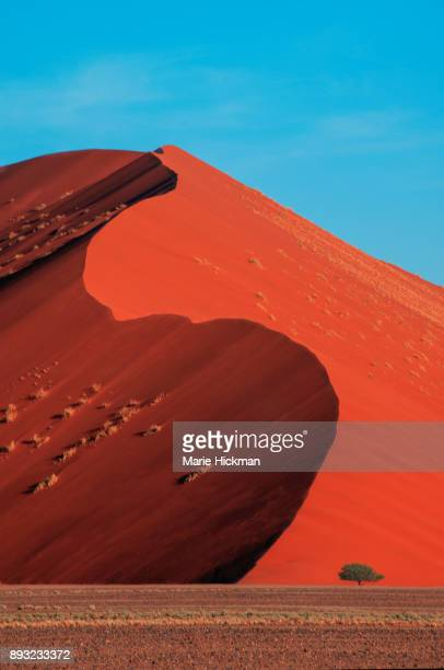 Famous Dune 45 in the Namib Desert of Sossusvlei region in Namibia created by red sands carried from the wind from Atlantic Coast of Namibia.