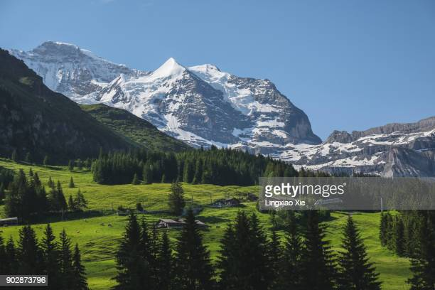 Famous Jungfrau mountain with forest and valley, Bernese Alps, Switzerland