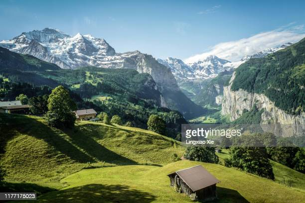 famous jungfrau mountain with forest and valley, swiss bernese alps, switzerland - berg stock-fotos und bilder