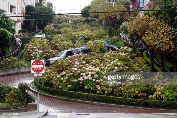 Famous Lombard Street in San Francisco, California on November 16'th, 2017. Lombard Street is an eastwest street in San Francisco, California that is...