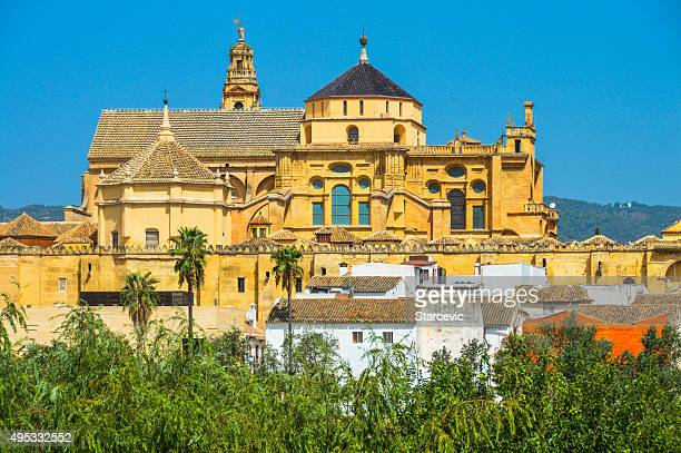 famous mezquita in cordoba, spain - cordoba mosque stock pictures, royalty-free photos & images