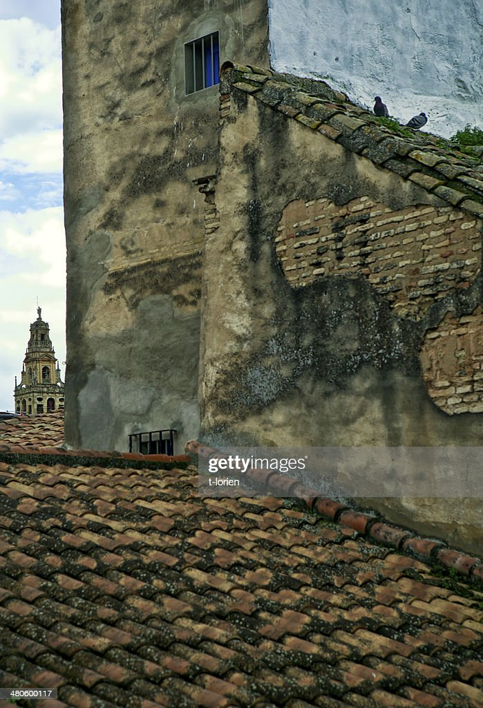 Famous Mosque of Cordoba : Stock Photo