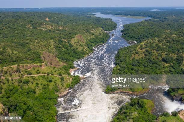 famous murchison falls at nile river, uganda - uganda stock pictures, royalty-free photos & images