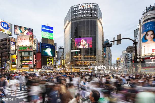 famous shibuya crossing in tokyo, japan capital city - tokyo japan stock pictures, royalty-free photos & images