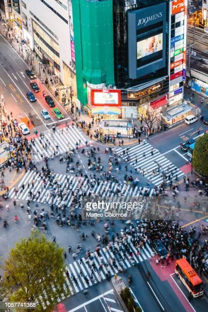 famous shibuya pedestrian crossing, tokyo, japan - shibuya ward stock pictures, royalty-free photos & images