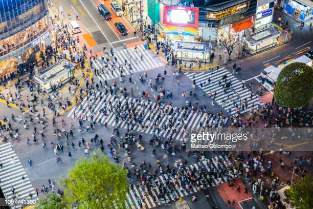 famous shibuya pedestrian crossing, tokyo, japan - overhead view of traffic on city street tokyo japan stock photos and pictures