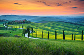 Famous Tuscany landscape with curved road and cypress, Italy, Europe