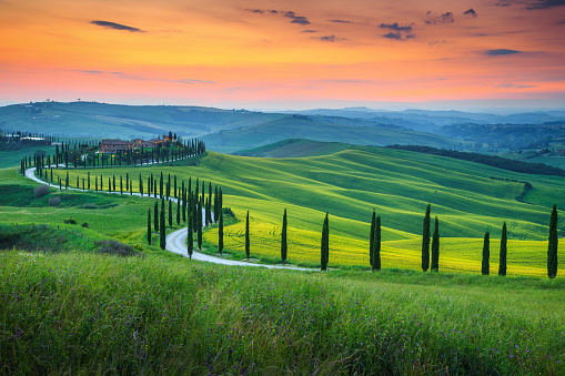 Famous Tuscany landscape with curved road and cypress, Italy, Europe 978368192