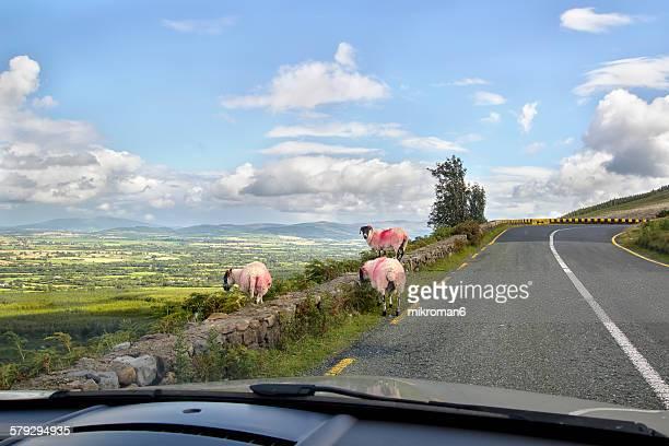 Famous Vee turn in Ireland