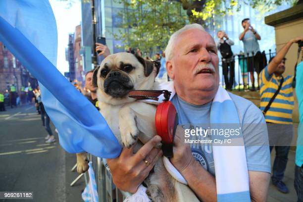 A fan and his dog show their support during a victory Parade by Manchester City FC on May 14 2018 in Manchester England