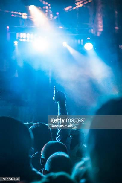 Fan at a concert
