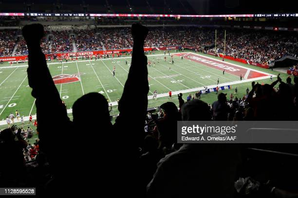 A fan cheers during an Alliance of American Football game between the San Diego Fleet and the San Antonio Commanders at the Alamodome on February 09...