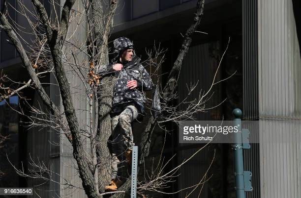 A fan climbs a tree during the Philadelphia Eagles Super Bowl Victory Parade on February 8 2018 in Philadelphia Pennsylvania