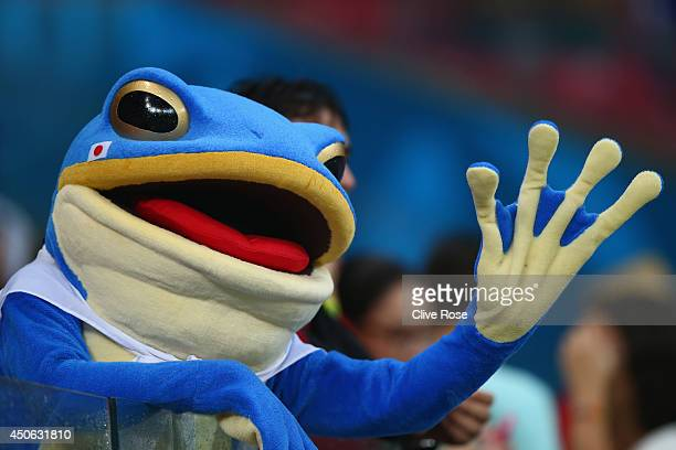 A fan dressed as a frog waves during the 2014 FIFA World Cup Brazil Group C match between the Ivory Coast and Japan at Arena Pernambuco on June 14...