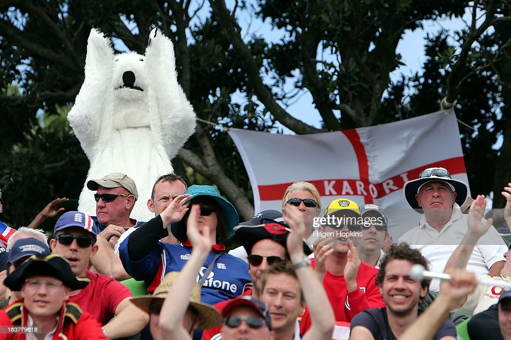 A fan dressed in a polar bear costume shows their support during day three of the second Test match between New Zealand and England at Basin Reserve on March 16, 2013 in Wellington, New Zealand.