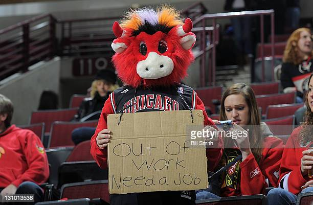 A fan dresses as 'Benny the Bull' holds a sign during the NHL game between the Nashville Predators and the Chicago Blackhawks on October 31 2011 at...