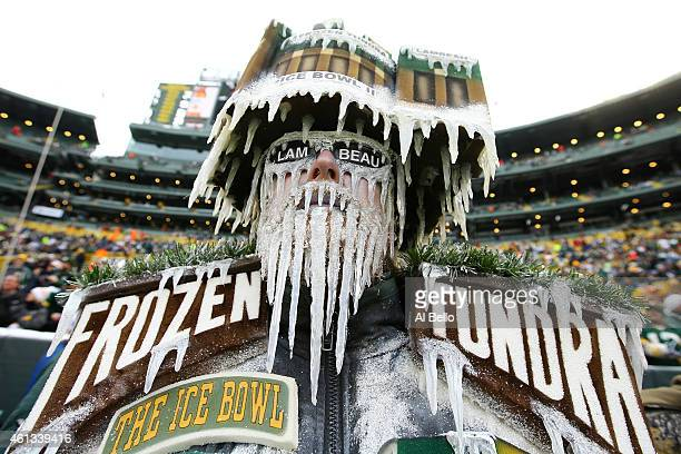 A fan dresses up as Lambeau Field prior to the 2015 NFC Divisional Playoff game between the Dallas Cowboys and the Green Bay Packers at Lambeau Field...