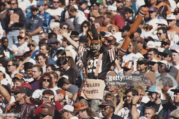 A fan for the Cleveland Browns complete with dog like mask supports his team from the dog pound section of the bleechers during the American Football...