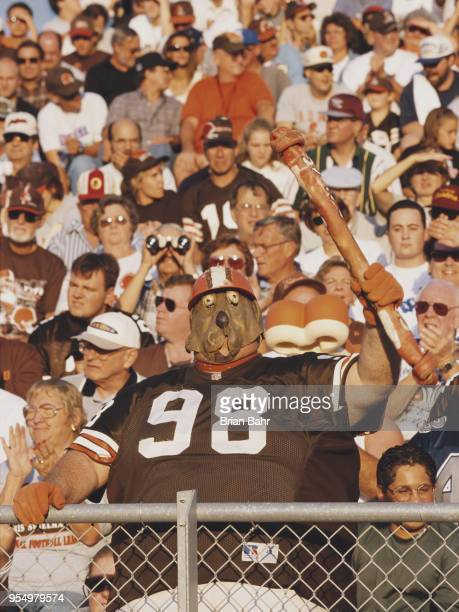 A fan for the Cleveland Browns complete with dog like mask supports his team from the dog pound section of the bleechers during the National Football...