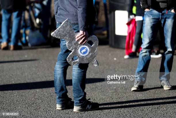A fan holds a home made foil FA Cup trophy before the Emirates FA Cup Fifth Round match between Brighton and Hove Albion and Coventry City at Amex...