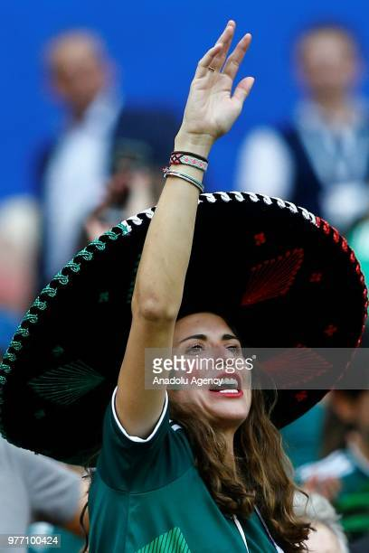 A fan is seen during the 2018 FIFA World Cup Russia Group F match between Germany and Mexico at the Luzhniki Stadium Moscow in Moscow Russia on June...