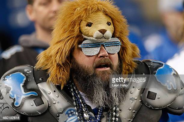 Fan looks on prior to the start of the game between the Detroit Lions and Tampa Bay Buccaneers at Ford Field on December 7 2014 in Detroit Michigan