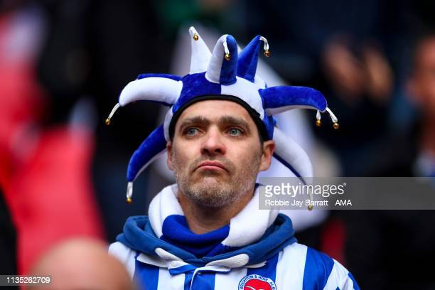 A fan of Brighton Hove Albion wearing a jester hat looks on during the FA Cup Semi Final match between Manchester City and Brighton and Hove Albion...