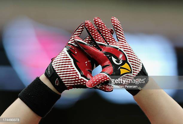 A fan of the Arizona Cardinals holds up his logo gloves during the team training camp at University of Phoenix Stadium on July 26 2013 in Glendale...