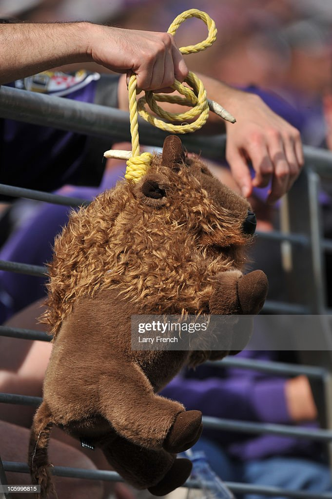 0129c617 A fan of the Baltimore Ravens hangs a stuffed buffalo during the ...