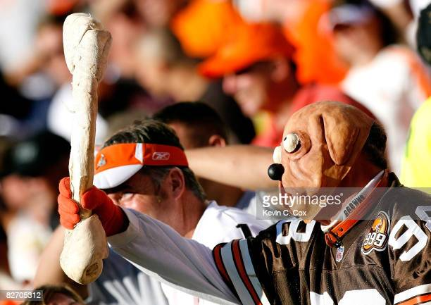 A fan of the Cleveland Browns cheers against the Dallas Cowboys during the game at Cleveland Browns Stadium on September 7 2008 in Cleveland Ohio