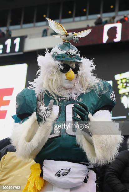 A fan of the Philadelphia Eagles cheers as they play against the Dallas Cowboys during the first half of the game at Lincoln Financial Field on...