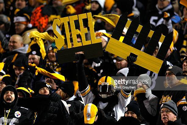 A fan of the Pittsburgh Steelers holds up a sign which reads Steel fence in support of the Steelers' defense against the San Diego Chargers during...