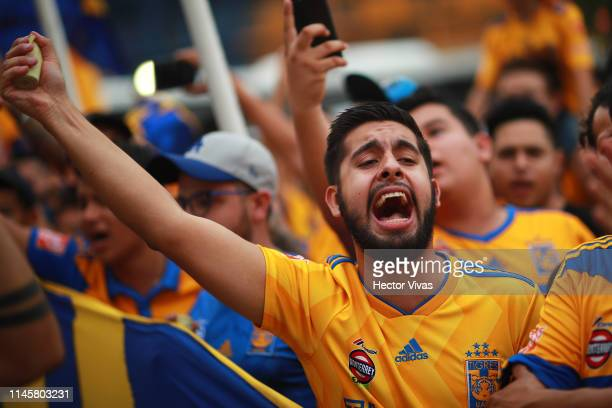 Fan of Tigres cheers prior the Final first leg match between Tigres UANL and Leon as part of the Torneo Clausura 2019 Liga MX at Universitario...